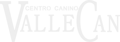 Logo ValleCan
